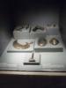 Museo Bolzano 24