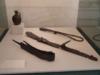 museo archeologico monterenzio 19